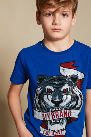 GRAPHIC TIGER BANNER T-SH